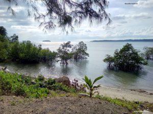 Beautiful Andaman