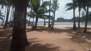 Carbyn's Cove Beach