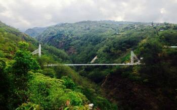 Singshore Bridge(Pelling)