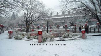 Nainital-Snowfall