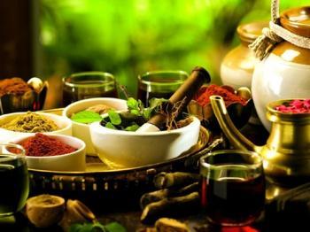 Wellness Activities in Uttarakhand 2