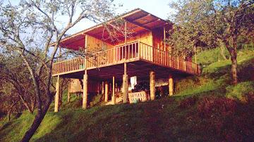 Wooden Villa: Prince Pine Suite