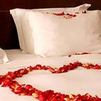 Special Manali Honeymoon Package