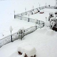 Manali Peak Season Package