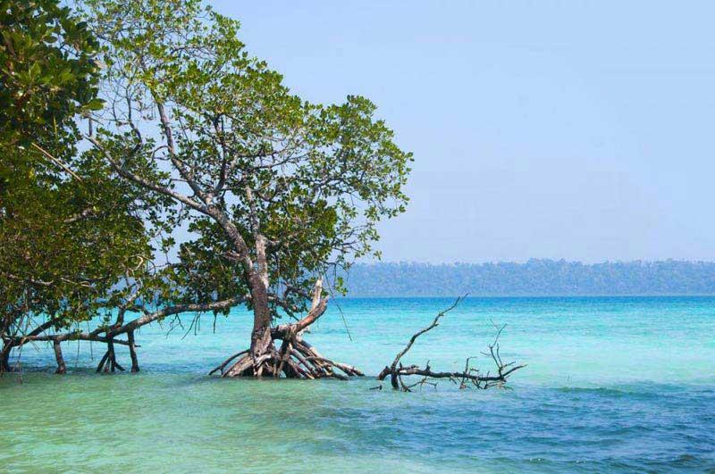 Andaman Honeymoon Escapade Package