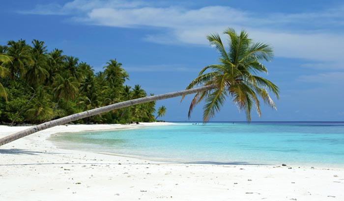 Delightful Andaman Package