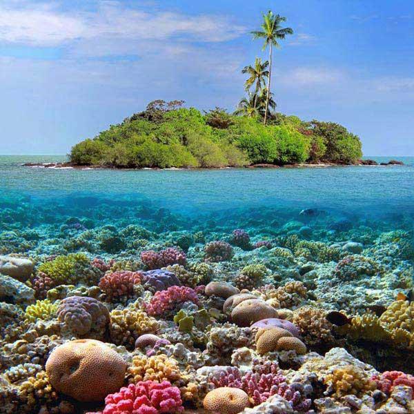 Coral Island Trip Package