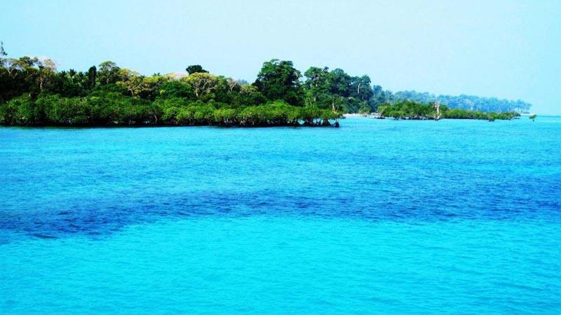Neil Island Trip Package