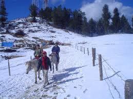 Best Himachal Tour Packages