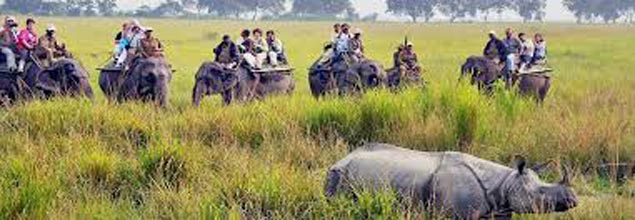Sights of Assam Tour