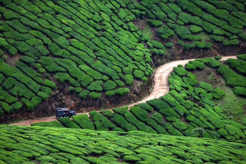 Kerala Package 6N 7D 3*