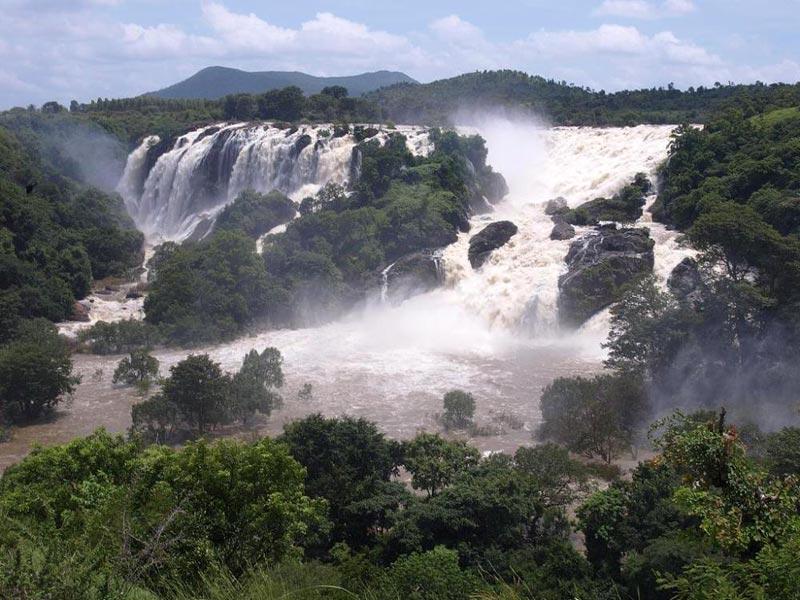 Banglore - Mysore - Coorg Tour
