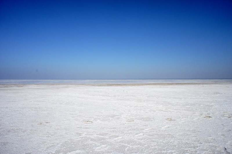 Adventurous Gujarat With Rann of Kutch Tour
