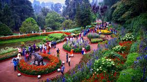 BANGALORE – MYSORE – OOTY TOUR PACKAGE
