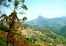 Bangalore - Mysore - Ooty - Kodai Package