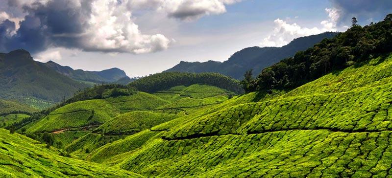 Kerala Tour (7D / 6N) Tour