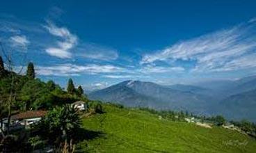Sikkim Rhododendron Trek Tour