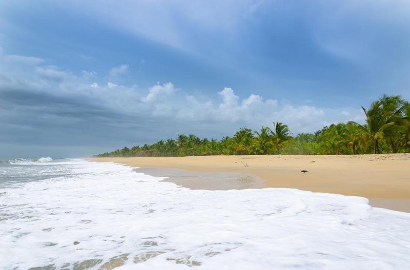 KeralaAyurvedaTours