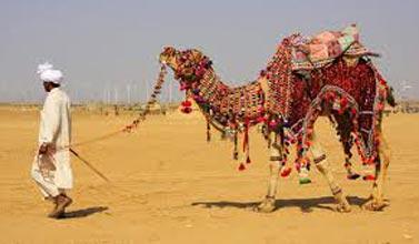 RajasthanBudgetTour