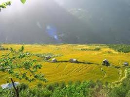 Kullu and Manali Tour