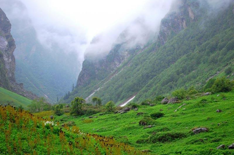 Rishikesh- Govindghat- Gagaria Tour