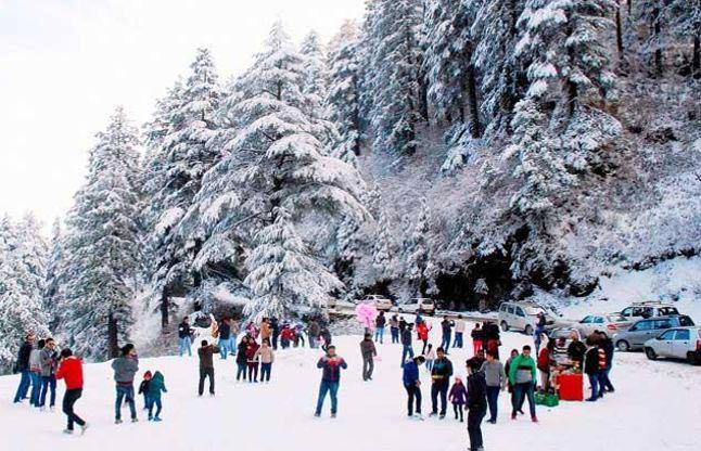 Delhi - Shimla - Kufri - Manali - Rohtang Pass Tour