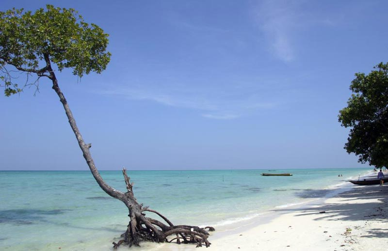Exotic Honeymoon Package Andaman