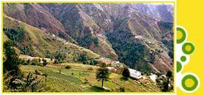 Romantic Honeymoon Package for Shimla