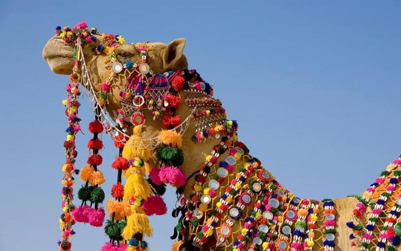 3* Star Heritage Tour In Rajasthan