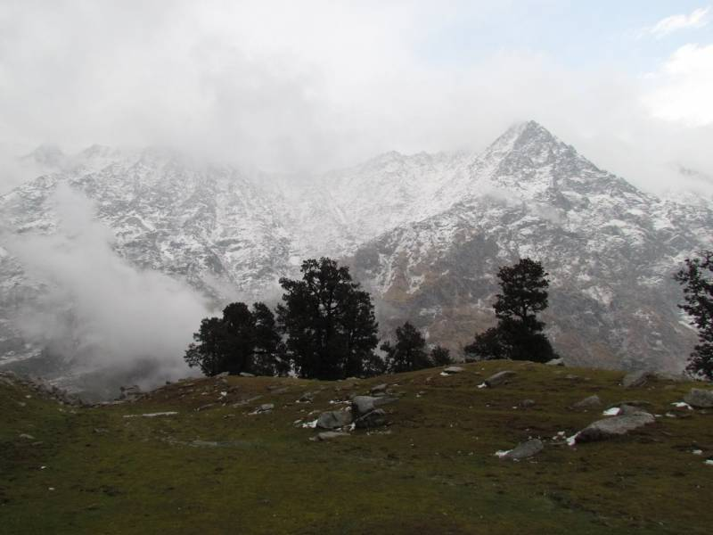 Short Trek to Triund Tour
