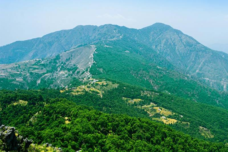 Bhadraj Forest and Temple Trail Tour