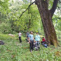 Chanderkhani Pass to Malana and Tosh 2020
