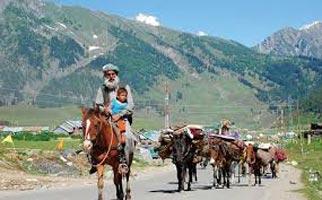 Jammu Wonders Tour