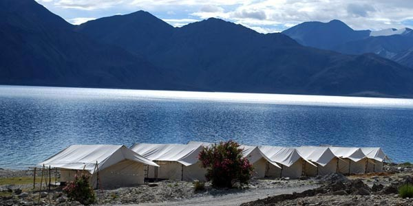 Ladakh Insight Tour Package