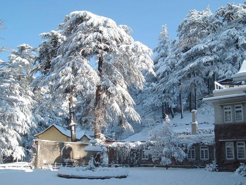 Delhi Shimla Tour Packages