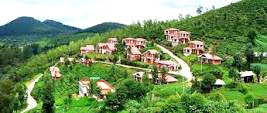 Queen Of Hilly Area Tour
