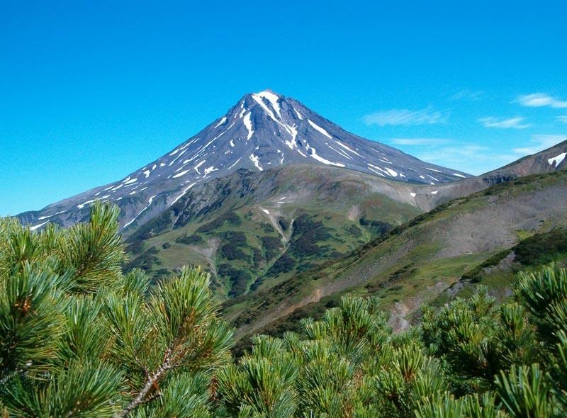Himalayan Paradise Stay Tour