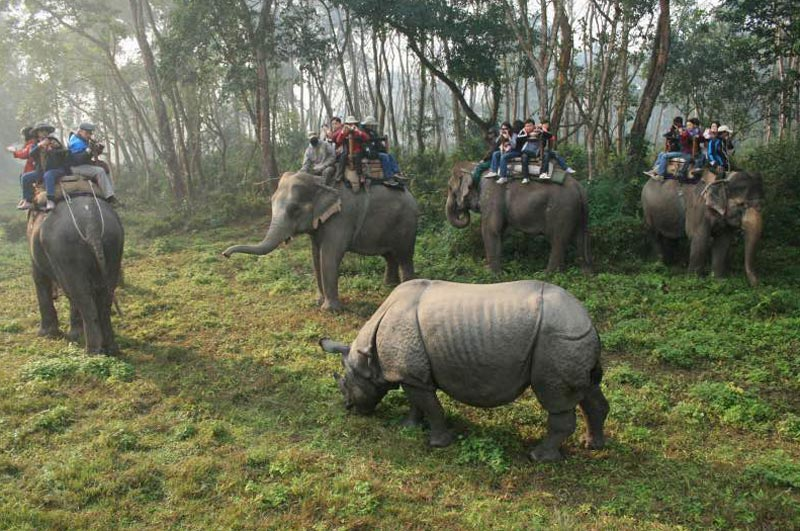 NEPAL - DREAM VALLEY WITH SAFARI TOUR