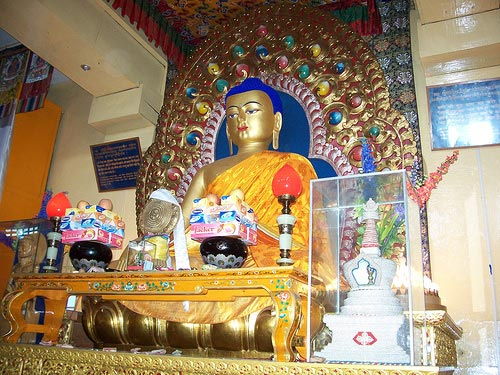 Best Of Dharamsala Tour