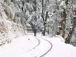Delhi - Shimla - Chandigarh Tour