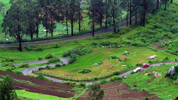 Mysore - Ooty - Coonoor - Kodai Tour