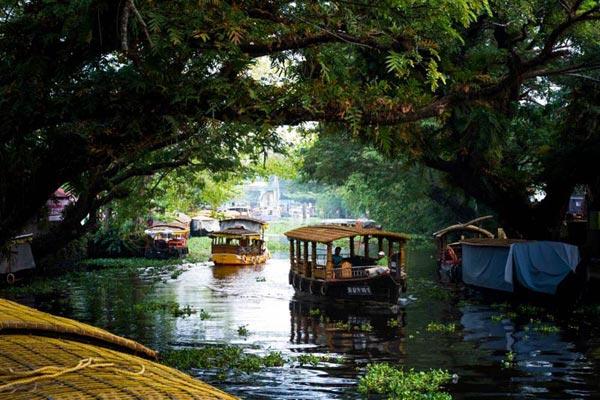 Munnar-Alleppy-Cochin Tour