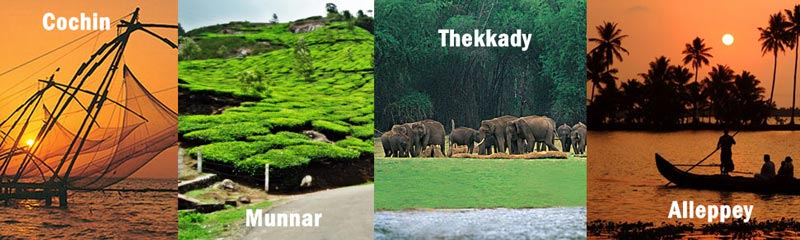 Kerala 4 Nights ( Athirappilly - Munnar - Alleppey) Tour