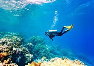 Andaman Package (5 Nights)