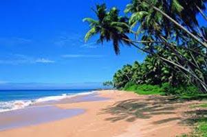 Paradise in Goa Tour