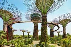 Singapore Amazing Tour