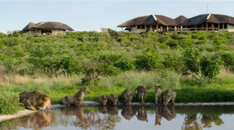 Tau Pan Camp 3 Nights Special (Locals)