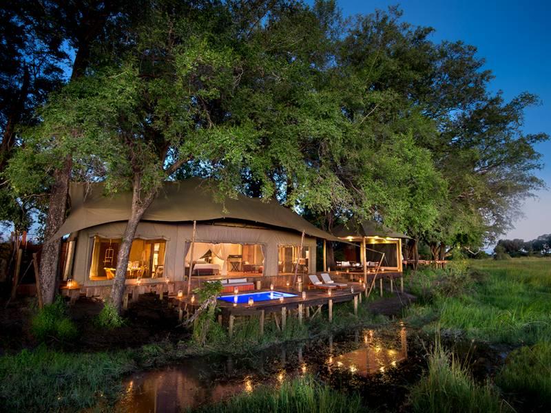 Duba Plains Camp 2 Nights Special (Locals)
