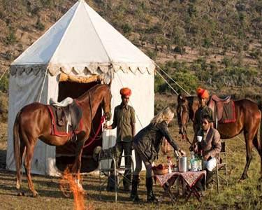 Golden Triangle with Horse Safari Tour