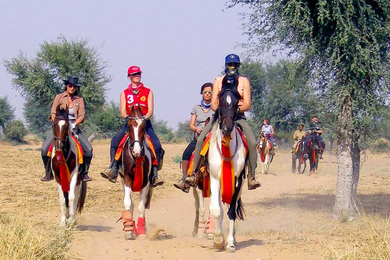 Horse Safari in Rajasthan Tour